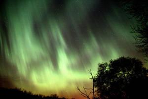 aurora by medievalgnome