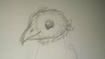My birdie boi by RNK50