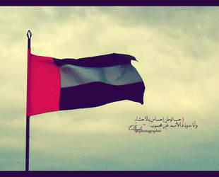 UAE flag by el-lozah