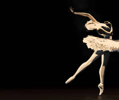 Ballerina by rhoogers
