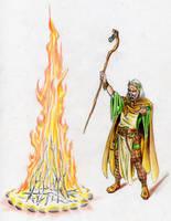 The Druid's fire by danbrenus