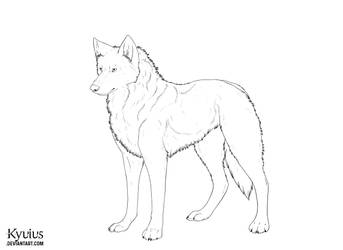 Realistic Wolf Lineart by Kyuius
