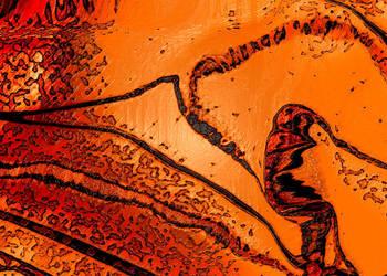 It is hot in the desert by yudi-marton