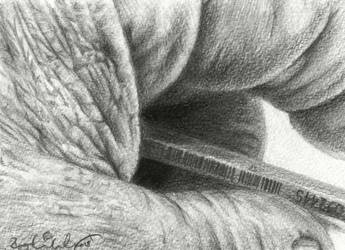 Hand With Pencil by Pappa60
