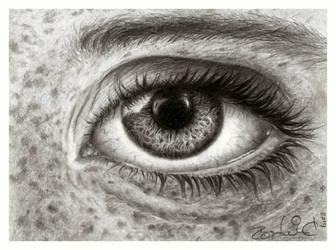 Eye study by Pappa60