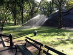 Morning in Central Park by MissIzzy