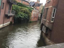Stream in Leuven by MissIzzy