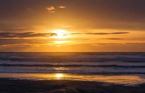 Oreti Sun by ARC-Photographic