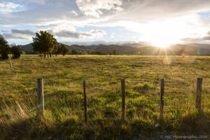 Rural Dannevirke by ARC-Photographic
