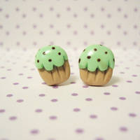 mint chocolate chip cupcakes by coonies