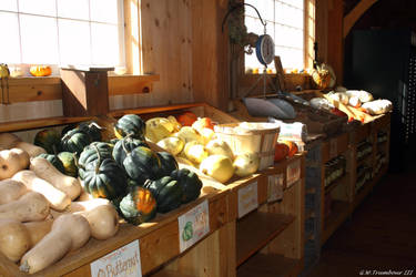 Many Squashes for sale by natureguy