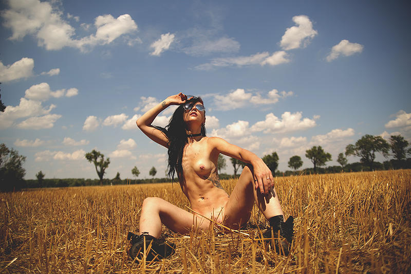 in the fields by calvato