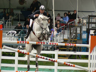Stock-Gray Grand Prix Jumper by TopDeckPhotography