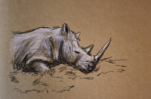 quick rhino drawing by SwarzezTier