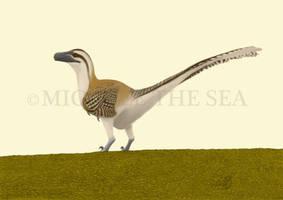Dromaeosaurus albertensis by puntotu