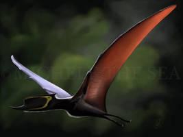 Dsungaripterus by puntotu