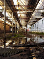 Urbex in Tourcoing II_05 by colin-H