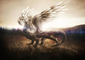 White Dragon by RegisCosta