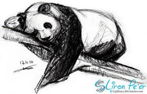 Bear 002 - Panda Bear + 04.10 by LPDisney