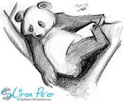 Bear 005 - Panda Bear + 04.10 by LPDisney
