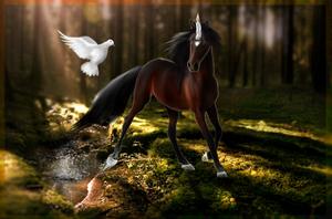 Bailandu ArtTrade by RidingInLongSocks
