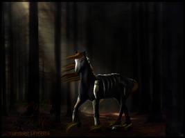 VooDoo :: Comm by RidingInLongSocks