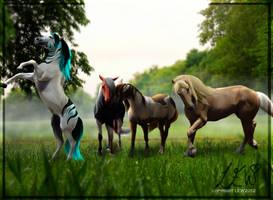 Meadow :: Comm by RidingInLongSocks