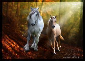 Autumn :: AT by RidingInLongSocks