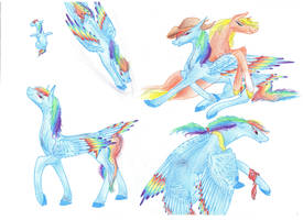 Rainbow Dash's timeline by Dawn22Eagle