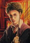 Gryffindor's Pride by DavidDeb