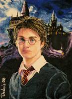 Harry Potter by DavidDeb