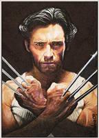 X-Men Origins: Wolverine by DavidDeb