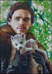 Robb Stark and Greywind by DavidDeb
