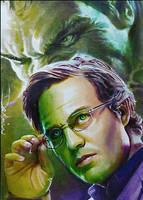 The Hulk by DavidDeb