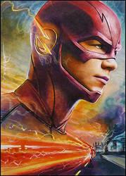 The Flash by DavidDeb