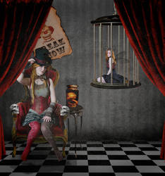 Welcome to the Freak Show by Vampy-note