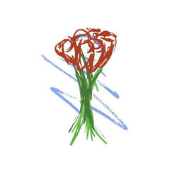 roses by jabberu