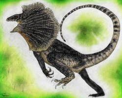 Land of Scales: Frilled Raptor (ChlamydoRaptor) by Quinn-Red