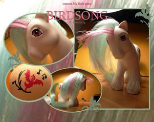 custom pony Birdsong by Solkatt