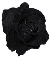 Sawy-stock: Black Rose by Sawy-Stock
