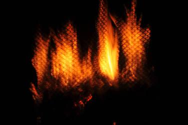 Plastic Fire II by LDFranklin