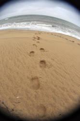 MV South Beach VIII by LDFranklin