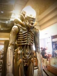 Universal Studios 12 X by LDFranklin