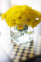 Vase Of Yellow Daisies by LDFranklin