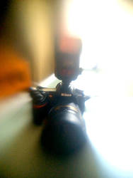Lensbaby iPhoneography CLXII by LDFranklin