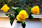 Evening Yellow Roses I by LDFranklin