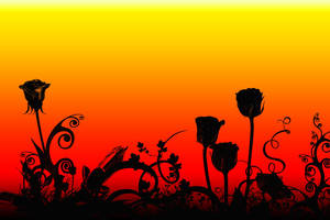 Rose Sunset Silhouette by LDFranklin