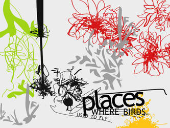 Places where birds used to fly... by missfairytaled