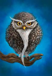 Sage Owlet by Sirinne