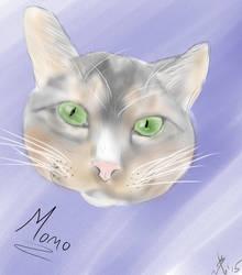 Momo by NinLuvs-SHM
